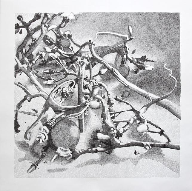 Angelika Arendt, Tusche auf Papier, 66,5 x 68 cm